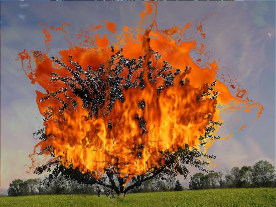 Burning Relationship